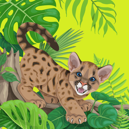 Vivid summer background with tropical plants and young cougar. Funny angry cougar cub sitting on liana branch. Space for text. Vector flat illustration.