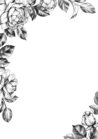 Black and white elegant border with hand drawn rose flower, buds and leaves. Pencil drawing monochrome floral composition in vintage style. Wedding invitation, greeting card, cover design.