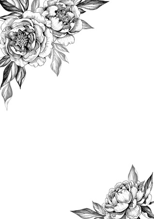 Black and white elegant background with peony flowers and leaves. Hand drawn floral border. Pencil drawing monochrome composition in vintage style. Wedding invitation, greeting card, cover design. Banque d'images - 118980169