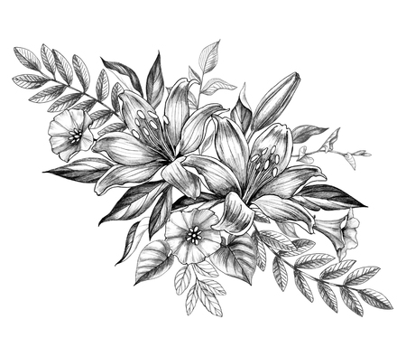 Hand drawn floral bunch with Lily and Bindweed flowers isolated on white background. Pencil drawing monochrome elegant flower composition in vintage style. Imagens
