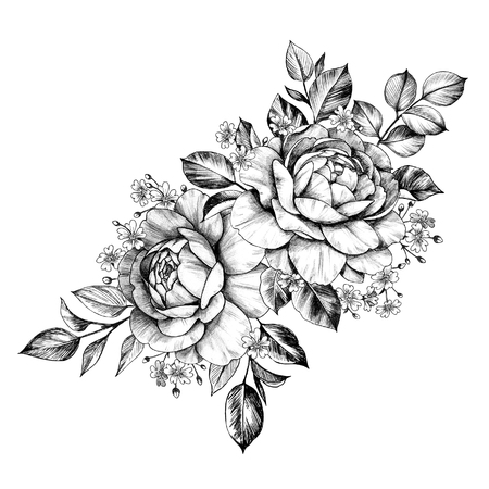 Hand drawn bunch with rose flowers and small gypsophila isolated on white background. Pencil drawing monochrome elegant floral composition in vintage style, t-shirt, tattoo design. Stock fotó
