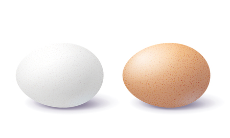 Huevo 3d blanco y marrón con sombra en la superficie aislada sobre fondo blanco. Dos huevos en blanco y manchados de pollo realistas de primer plano. Ilustración de vector