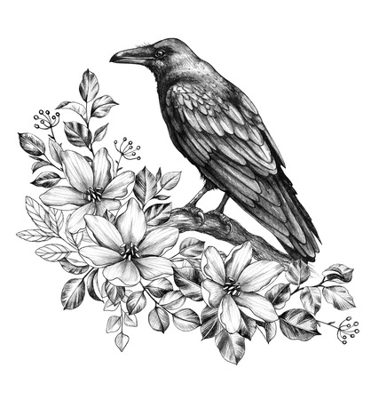 Hand drawn crow and wildflowers isolated on white background. Black bird sitting on tree branch. Raven with floral bunch side view pencil drawing in vintage style, t-shirt design, tattoo art.
