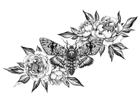 Hand drawn Acherontia Styx butterfly and Peony flowers on white. Pencil drawing monochrome elegant floral composition with Death's-Head Hawkmoth top view. Illustration in vintage style, tattoo art. Archivio Fotografico - 120611282