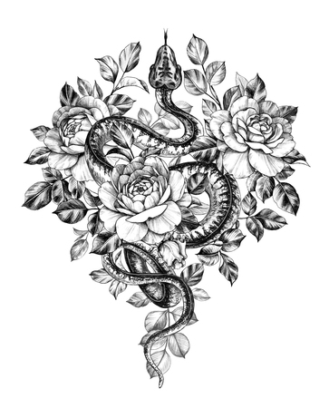 Hand drawn creeping Garden Tree Boa decorated roses isolated on white background. Pencil drawing monochrome Python snake with flowers. Floral illustration in vintage style, t-shirt design, tattoo art.