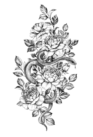 Hand drawn Snake decorated roses isolated on white background. Pencil drawing monochrome serpent among flowers. Floral vertical illustration in vintage style, t-shirt design, tattoo art.