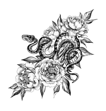 Hand drawn creeping Garden Tree Boa on trunk and peonies isolated on white background. Pencil drawing monochrome Python snake with flowers. Floral illustration in vintage style, t-shirt design, tattoo art. Stok Fotoğraf