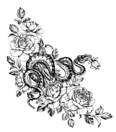 Hand drawn creeping Garden Tree Boa on trunk and roses isolated on white background. Pencil drawing monochrome Python snake with flowers. Floral illustration in vintage style, t-shirt design, tattoo art. Stok Fotoğraf