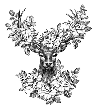 Hand drawn Red Deer head decorated roses isolated on white background. Pencil drawing monochrome elegant floral composition with deer head and flowers in big branched horns, t-shirt, tattoo design.
