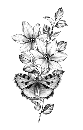 Hand drawn butterfly with flowers isolated on white background. Pencil drawing monochrome insect and plants. Elegant floral composition in vintage style, t-shirt design, tattoo art. Stock Photo