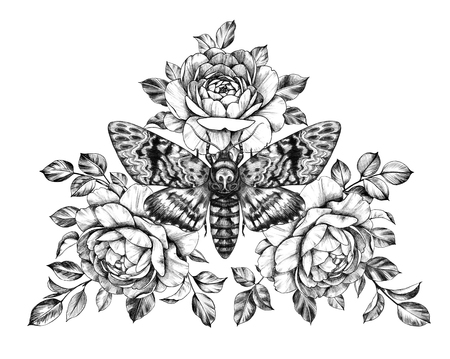 Hand drawn Acherontia Styx butterfly and Roses on white. Pencil drawing monochrome elegant floral composition with Deaths-Head Hawkmoth top view. Illustration in vintage style, tattoo art.