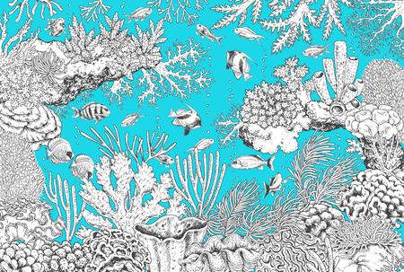 Éléments naturels sous-marins dessinés à la main. Croquis noir et blanc de coraux de récif et de poissons nageurs sur fond turquoise. Illustration horizontale monochrome de la vie marine. Coloriage.