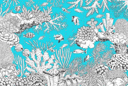 Hand drawn underwater natural elements. Black and white sketch of reef corals and swimming fishes on turquoise background.  Monochrome horizontal illustration of sea life. Coloring page. Illustration