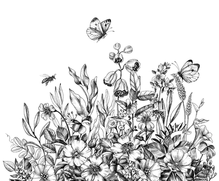 Hand drawn wildflowers, flying bees and butterflies isolated on white background. Pencil drawing  elegance flowers border in vintage style. Archivio Fotografico - 123770429