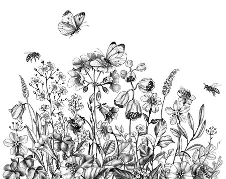 Hand drawn wild flowers, flying bees and butterflies isolated on white background. Pencil drawing  elegance floral border in vintage style. Archivio Fotografico - 123770431