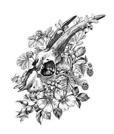 Hand drawn Goat Skull decorated Dog Rose Flowers and forest berries isolated on white background. Pencil drawing cranium side view in vintage style, t-shirt design, tattoo art.