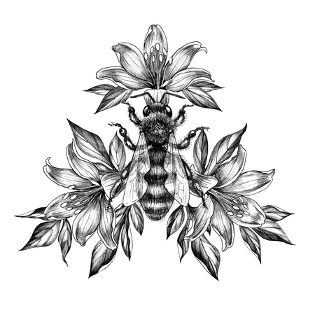 Hand drawn big bee decorated Lily isolated on white background. Pencil drawing monochrome honeybee among flowers. Elegant floral composition in vintage style, t-shirt design, tattoo art. Stock fotó