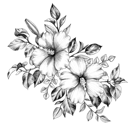 Hand drawn hibiscus flowers bunch isolated on white background. Pencil drawing monochrome elegant floral composition in vintage style, t-shirt, tattoo design.