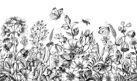 Seamless border made with hand drawn monochrome bees, butterflies, meadow plants, dog rose, wildflowers in row on white background. Pencil drawing  elegance floral pattern  in vintage style. Stock fotó