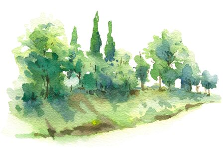 Hand drawn nature scene with cypress trees and bushes on hill watercolor sketch. Fragment of summer landscape.