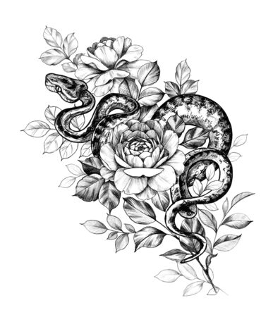 Hand drawn creeping Garden Tree Boa and roses isolated on white background. Pencil drawing monochrome Python snake with flowers. Floral illustration in vintage style, t-shirt design, tattoo art.