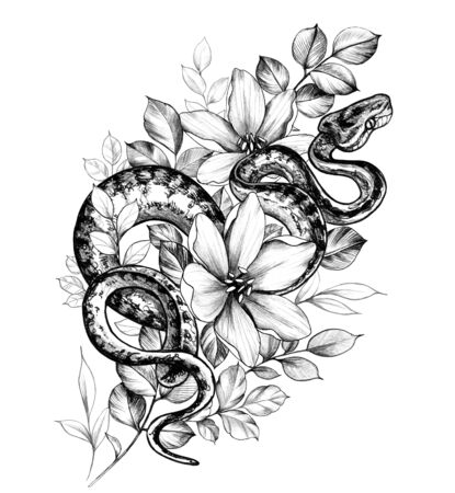 Hand drawn creeping Garden Tree Boa and flowers isolated on white background. Pencil drawing monochrome Python snake and wildflowers.Elegant floral composition in vintage style, t-shirt design, tattoo art. Stok Fotoğraf