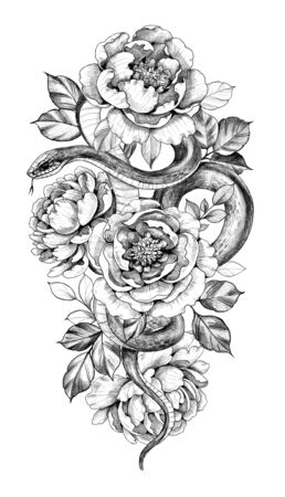 Hand drawn snake and peony isolated on white background. Pencil drawing monochrome serpent with flowers. Floral illustration in vintage style, t-shirt design, tattoo art. Stock Photo