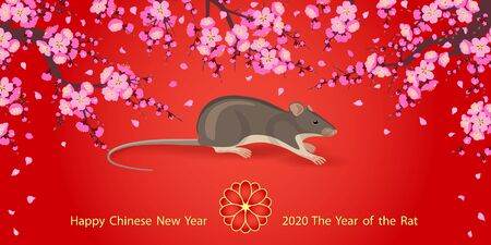 Greeting  New Years card with pink blossom branches and mouse rodent on red background. Rat is a symbol of the 2020 Chinese New Year.