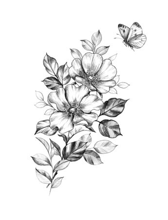 Hand drawn floral bunch with dog rose flowers and leaves and flying butterfly isolated on white background. Pencil drawing monochrome elegant composition in vintage style, t-shirt, tattoo design. Archivio Fotografico - 127807029