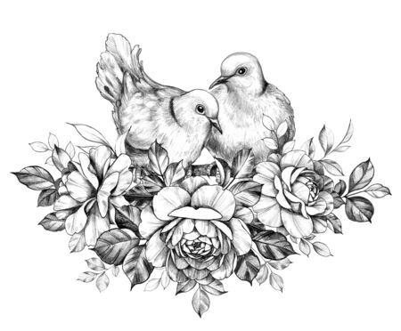 Hand drawn doves couple sitting on branches with roses isolated on white background. Pencil drawing monochrome elegant floral composition with two pigeons in vintage style, t-shirt, tattoo design.  Reklamní fotografie