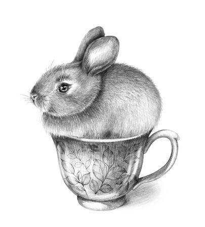 Hand gezeichneter kleiner Hase, der in der Schale lokalisiert auf weißem Hintergrund sitzt. Bleistiftzeichnung monochrome Komposition mit Teetasse und süßem Häschen im Vintage-Stil.