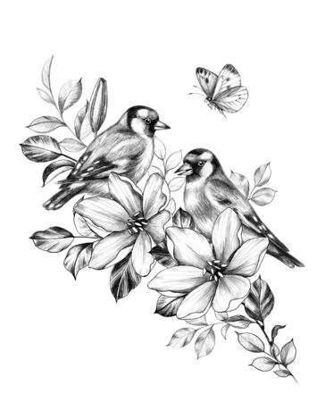 Hand drawn couple goldfinches sitting on branch with flowers. Pencil drawing monochrome elegant floral composition with birds and butterfly in vintage style, t-shirt, tattoo design.  Фото со стока