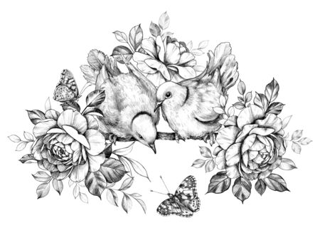Hand drawn doves couple with roses isolated on white background. Pencil drawing monochrome elegant floral composition with two birds and butterflies in vintage style, t-shirt, tattoo design.