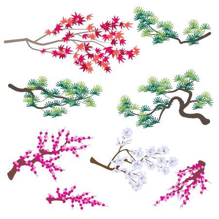 Simplified images of different plant set. Korean pine, Japanese maple and blooming tree branches isolated on white.