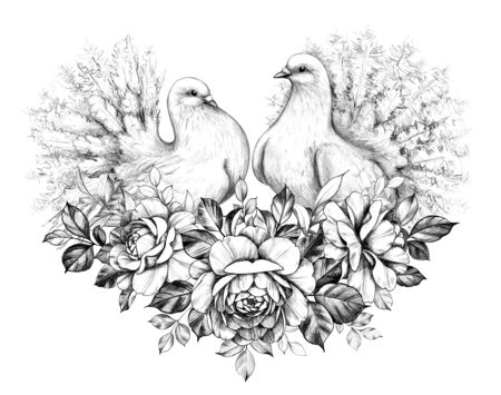 Hand drawn doves couple sitting on  roses  bunch isolated on white background. Pencil drawing monochrome elegant floral composition with two pigeons with peacock tails in vintage style.