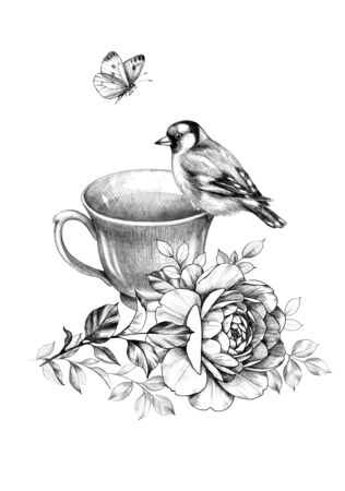 Hand drawn cup of tea, sitting goldfinch, flying butterfly and rose isolated on white background. Pencil drawing monochrome floral composition with teacup, bird and beautiful flower in vintage style.