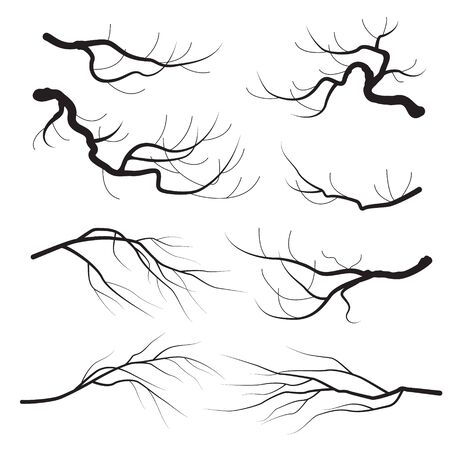 Set of tree branch without leaves black silhouettes isolated on white background. Monochrome simple plants element vector flat illustration. Banque d'images - 130546368