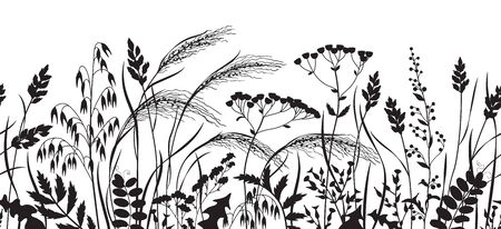 Seamless horizontal border made with monochrome wild plants. Black silhouette meadow grass and wildflowers in row on white background.  Floral natural pattern vector flat illustration.
