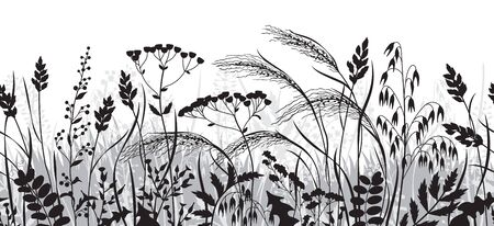 Seamless horizontal border made with monochrome wild plants. Black and grey silhouette meadow grass and wildflowers in row on white background.  Floral natural pattern vector flat illustration.