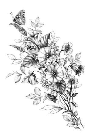 Hand drawn butterfly sitting on wildflowers bouquet isolated on white background. Pencil drawing monochrome floral composition with field flowers in vintage style.  Imagens
