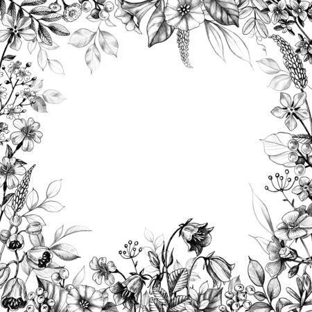 Hand drawn floral border with wild plants on white background. Pencil drawing monochrome square frame  with field flowers in vintage style.  Imagens