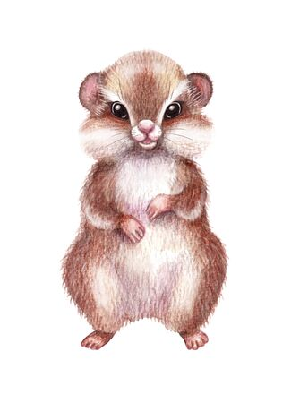 Hand drawn hamster isolated on white background. Pencil drawing.cartoon illustration of cute furry rodent with big  cheeks. Standard-Bild - 131410159