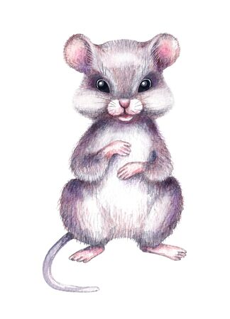 Hand drawn mouse isolated on white background. Pencil drawing.cartoon illustration of cute furry rodent.  Rat is a symbol of the 2020 Chinese New Year.