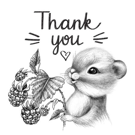 Hand drawn cute Chipmunk isolated on white background. Pencil drawing little furry rodent with big cheeks. Monochrome greeting card with cartoon animal holds raspberries, thank you inscription. Stok Fotoğraf
