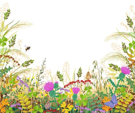 Horizontal border with autumn meadow plants and insects. Floral frame with fading grass, colorful wild flowers, bumblebees and butterflies on white background, space for text. Vector flat illustration