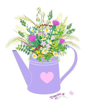 Watering can with wild flowers bouquet isolated on white. Flower bunch made with thistle, camomile, oxalis and grass ears. Floral composition with lilac pot and meadow plants vector flat illustration.