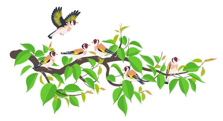 Simple Goldfinches on green tree branch isolated on white. Side view flying and sitting birds with bright colored plumage. Forest or park songbird vector illustration in flat style.
