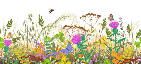 Seamless horizontal border with autumn meadow plants and insects. Floral pattern with fading grass, colorful wild flowers in row, bumblebee and butterflies on white background.