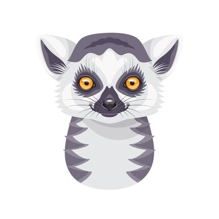 Funny Ring-tailed Lemur face or head isolated on white background. Cartoon cute furry wild animal vector flat illustration.