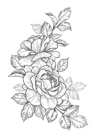 Hand drawn rose flower and leaves bunch isolated on white. Vector line art monochrome elegant floral corner composition in vintage style, t-shirt, tattoo design, coloring page, wedding decoration.